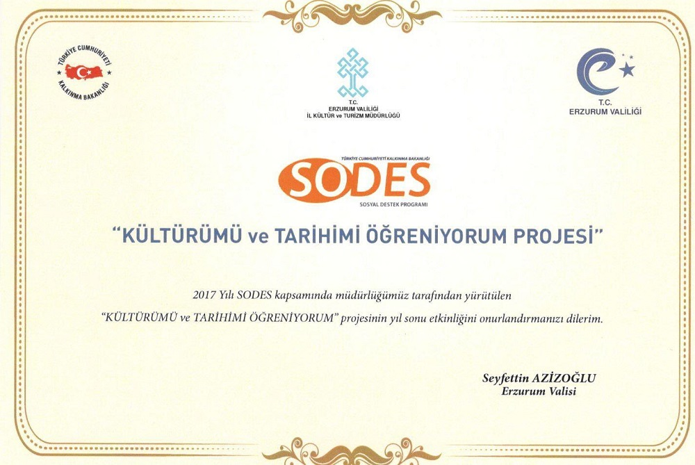 sodes proje